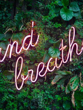 breathe neon sign