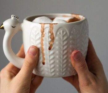 hands holding white mug filled with hot chocolate against a gray background